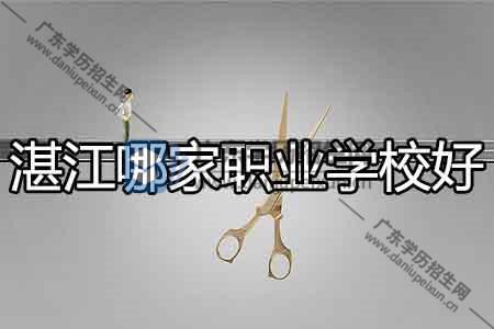 湛江市职业学校有哪家就业还行?