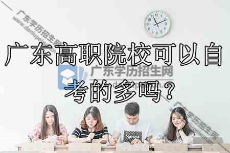 广东高职院校可以自考的多吗?